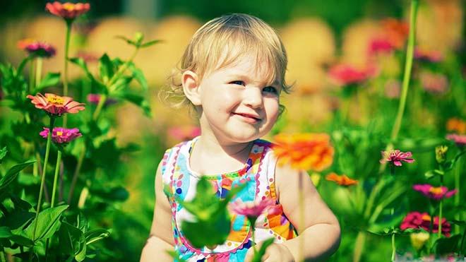 Эхинацея для иммунитета взрослым: что это и как принимать