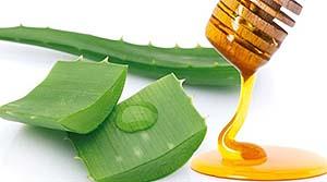Алоэ для иммунитета - рецепты с медом, кагором для повышения иммунитета